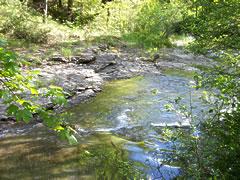 rivière la Jonte