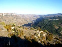 Vallée de la Jonte